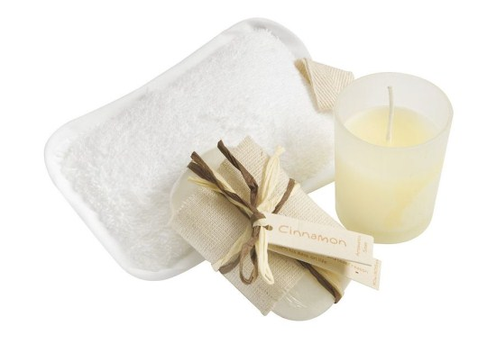 Bath & Wellness/Grooming