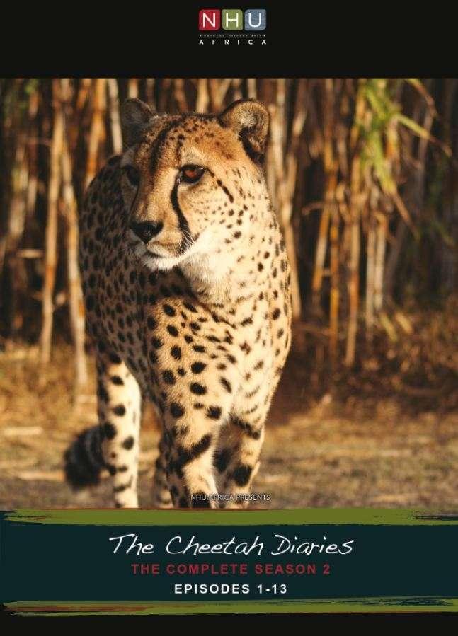 cheetahdiaries2