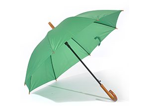 HIGGINS UMBRELLA - green