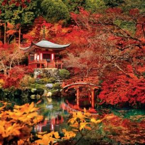 Orient Dream