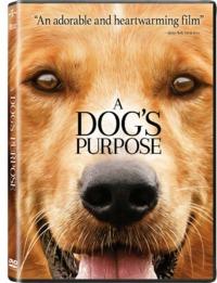 Dogs purpose,