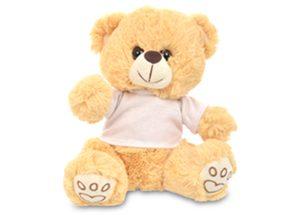 Sam the Teddy bear