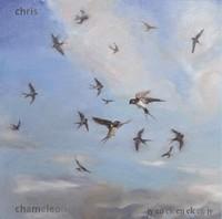 Chris Chameleon - Jy en ek en ek en jy